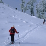 Backcountry and Metal-Edged Cross Country Skis