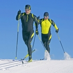 Cross Country Nordic Ski Poles